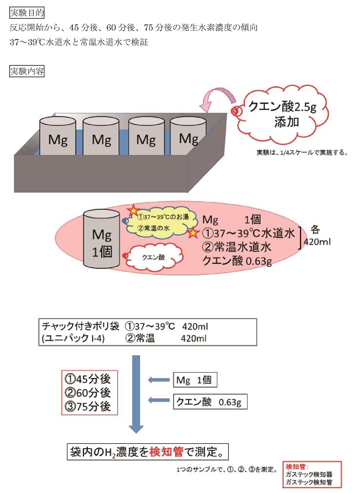 水素試験の内容
