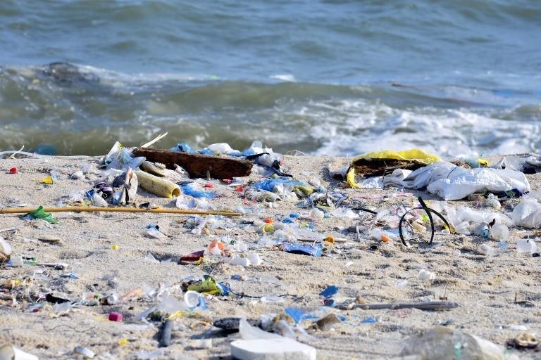 汚れた海の写真